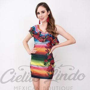 Mexican Serape & Red Roses Printed Dress Stretchy